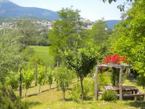 Le marche villa rentals in italy