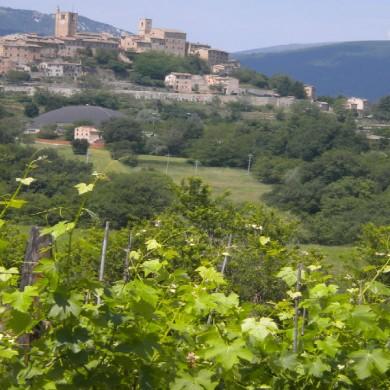 le marche villa holidays in italy