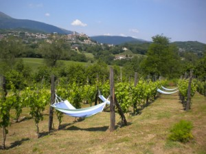 agriturismo self catering holiday in Le Marche