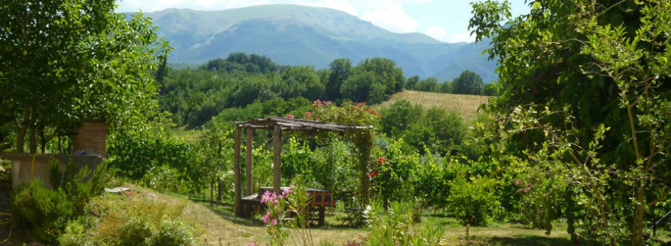 house and pool rental le marche italy