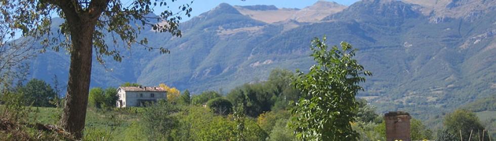 le marche garden view