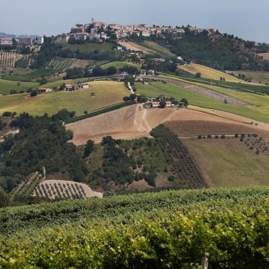 italian touring in le marche