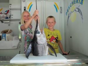 Food market - fish stall Sarnano MC