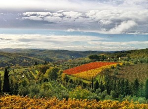 Fall in Marche italy