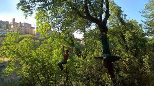 adventure park le marche italy