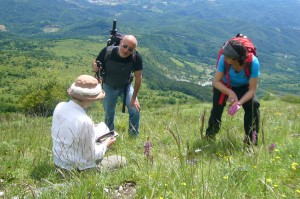 hunt truffles in italy