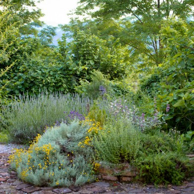 the garden at Villa San raff Italia