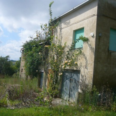 farmhouse sale Marche italy