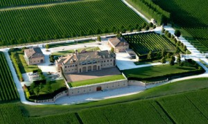 winery cantina le marche italy