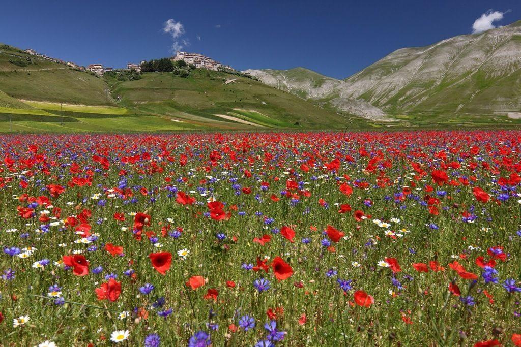 guided walking holidays Italy