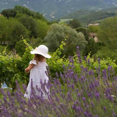 Italian farmstay Marche