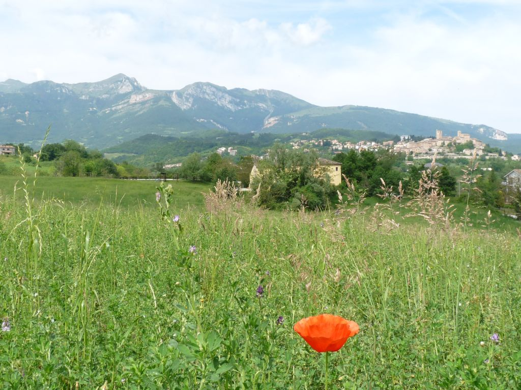 Vacation in Italy on farmstay