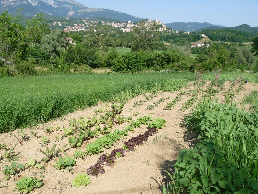 Sustainable holidays Italy