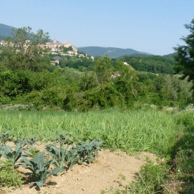 Italian Organic farming vacation