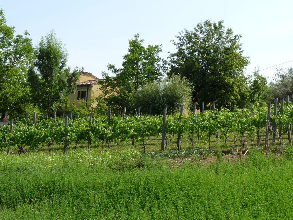 Eco friendly holidays Italy
